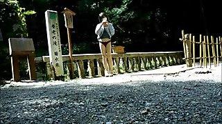 yoro park digest