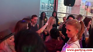 Real sexparty babes blowing stripper cocks